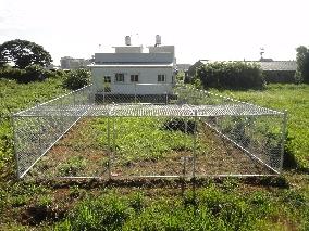 商品名稱:鍍鋅菱形網圍籬(農地)