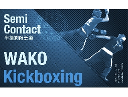 WAKO世界踢拳道聯盟:半接觸踢拳道課程