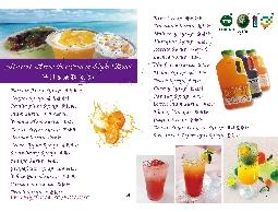各式果汁濃糖糖漿、果粒醬、水果顆粒等