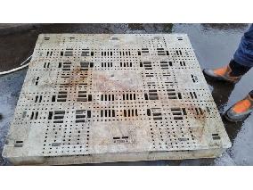 日本、二手、中古塑膠棧板、耐重型。