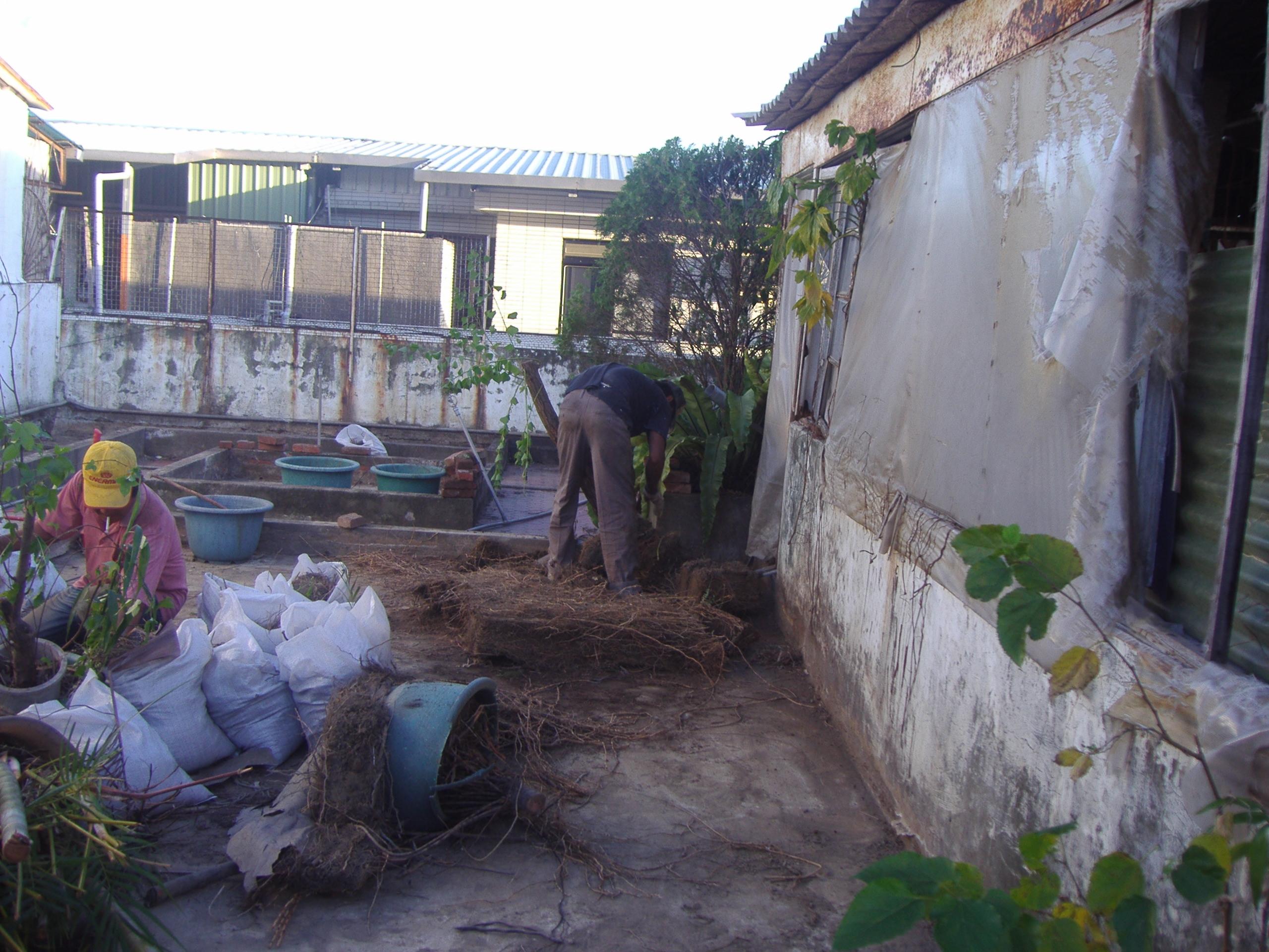 屋頂花園清運防水