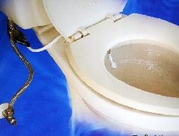 尋寶新天地*屁屁清洗器~馬桶專用肛門私密處衛生清潔全家人適用