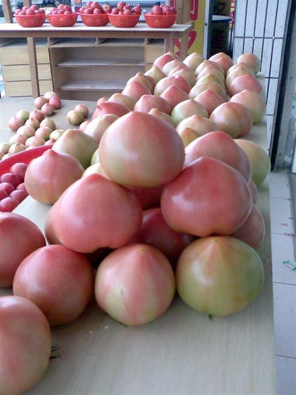 自產溫泉蕃茄