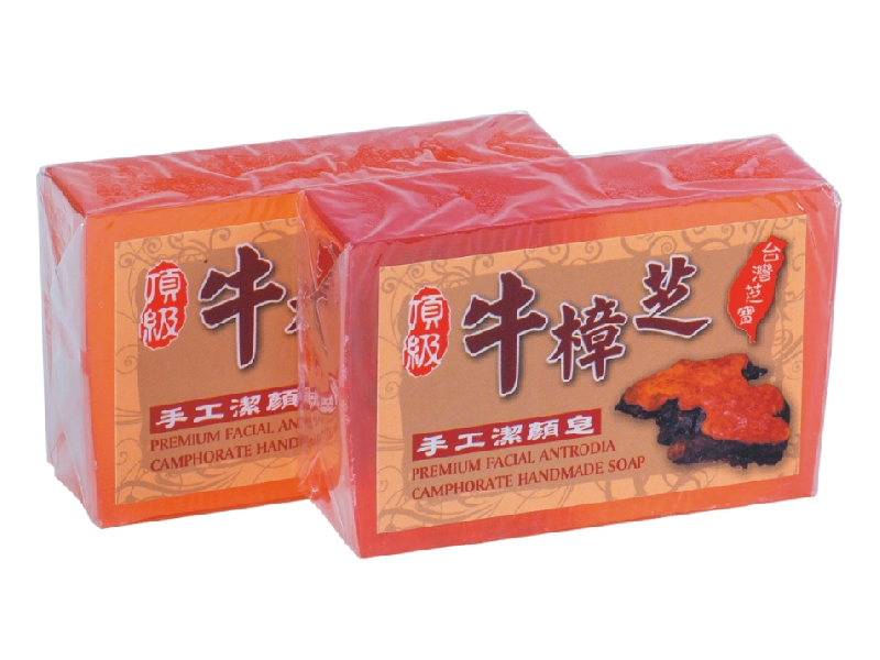 頂級牛樟芝手工潔顏皂.醫美頂級阿里山檜木檸檬面膜、7GF時空膠囊經銷批發