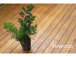 【緬甸柚木-TKWOOD】柚木戶外景觀實木地板✶Teak ✶ - 18 X 95 MM