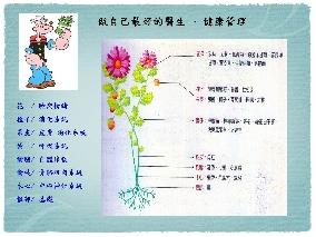桃園縣樂活瑜伽協會