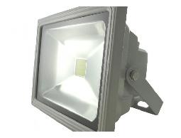 LED戶外投射燈(足50瓦)