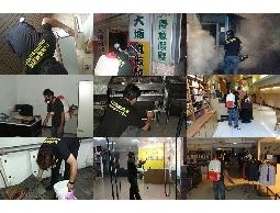 除蟲公司|台北消毒|台北除蟲|消毒公司 免費專線:0800-088-869