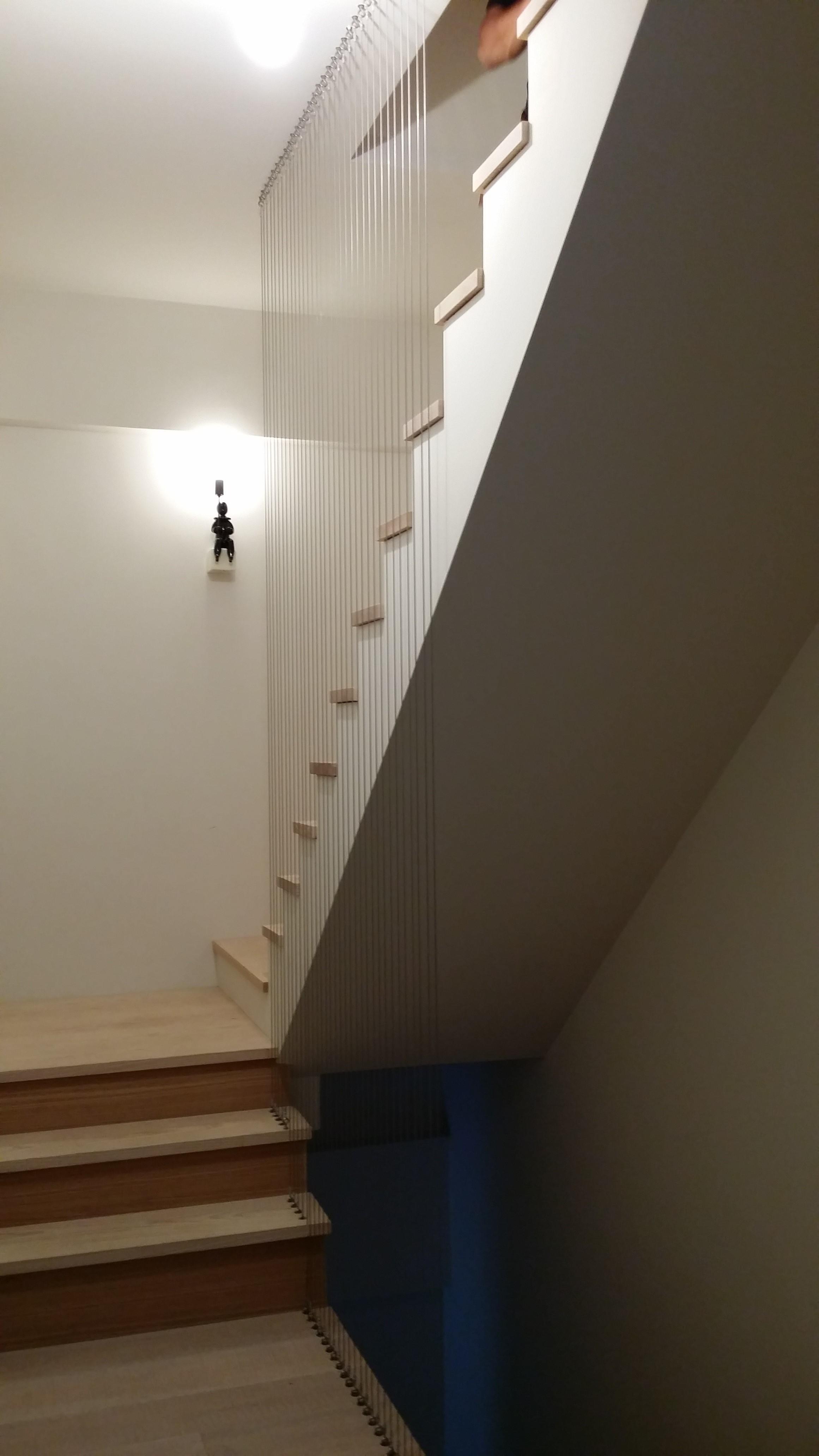 寵物、天井、梯間防墜