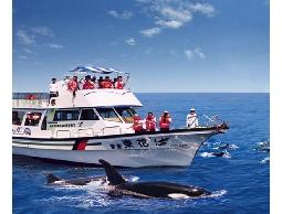 花蓮鯨世界賞鯨生態之旅 成人票