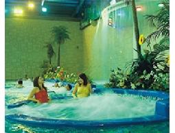 高雄大地游泳潛水俱樂部門票游泳券