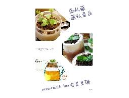 盆栽鮮奶霜