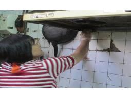 妳累了嗎?我們幫妳做家務,家事管理我們最在行,打掃洗衣煮飯樣樣行!