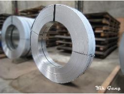 不銹鋼帶(Stainless Steel Strips)